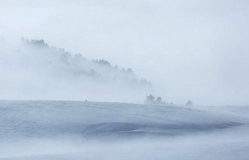Minimalism in winter von Sander van der Werf