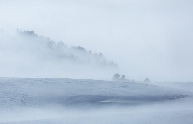 Minimalism in winter van Sander van der Werf