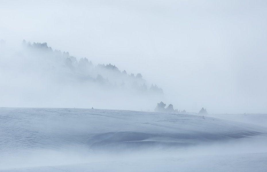 Minimalism in winter