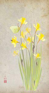 Narcissen met citroenvlinder