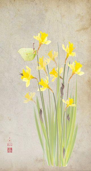 Narcissen met citroenvlinder van Fionna Bottema