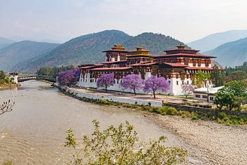 Punakha Dzong van Erwin Blekkenhorst