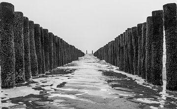 Paalhoofden richting zee van Jacqueline Sinke
