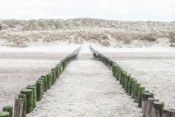 Houten strandpalen op het strand en  duinenrij in Zeeland. van Ron van der Stappen
