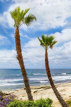 SAN DIEGO La Jolla zeezicht van Melanie Viola