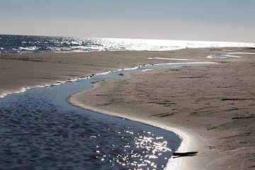 zee van marijke servaes