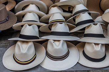 Panamas blancs en vente sur un marché en Colombie, Amérique du Sud. sur WorldWidePhotoWeb