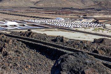 Zeezoutproductie op Lanzarote van Reiner Conrad