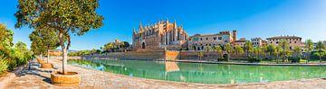 Kathedraal La Seu in het historische centrum van Palma de Mallorca van Alex Winter