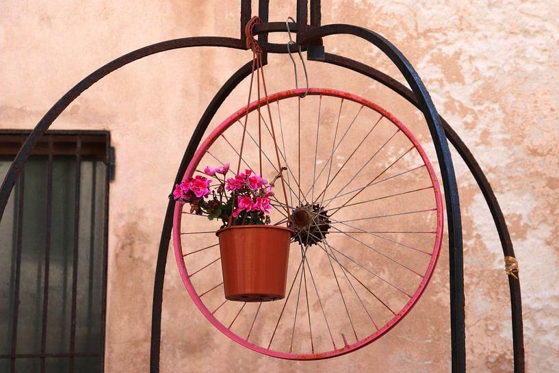 Alghero, Sardinië, Italië - Fotografie van Simone van Herwijnen
