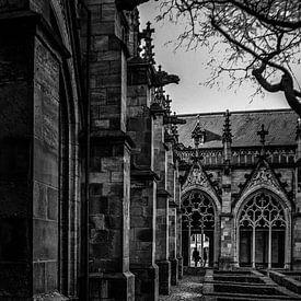 Pandhof<Utrecht van Robin Pics