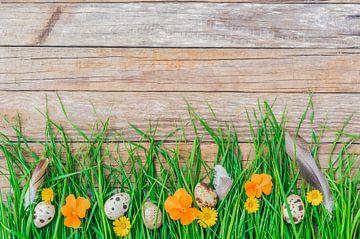 Ostereier, Blumen, Federn und saftig grünes Gras von Alex Winter