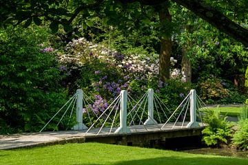 Rotterdam-Botanische Tuinen Trompenburg 02 von Hans Blommestijn