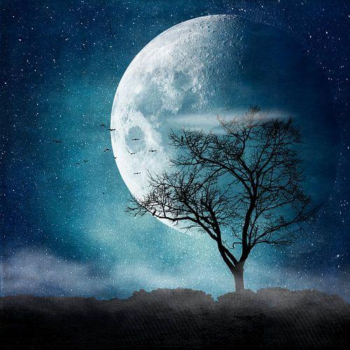 Moon Blues van Dirk Wüstenhagen