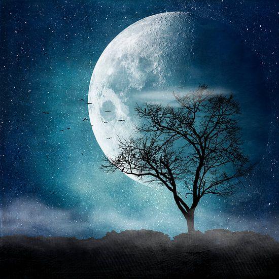 Moon Blues