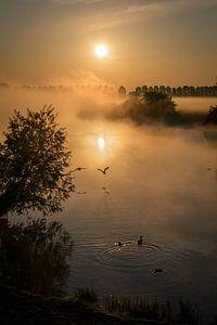 opstijgen richting de zonsopkomst van