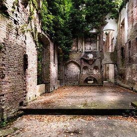 Urban/Urbex/Fallen Castle Asten près de Heusden sur Marianne van der Zee