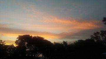 Vanilla Sky - Guadeloupe van Daniel Chambers