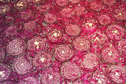 Decoratieve compositie van rode kool