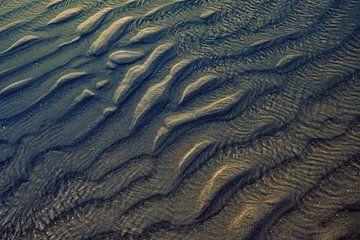 IJmuiden beach van