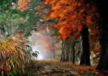 Herbstwald van Lars Tuchel