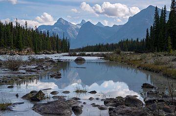 Athabasca River, Jasper National Park, Rocky Mountains, Alberta, Canada van Alexander Ludwig