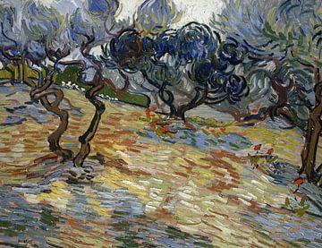 Vincent van Gogh. Landschap bij Saint-Rémy van