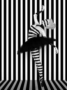 Tanz der Linien