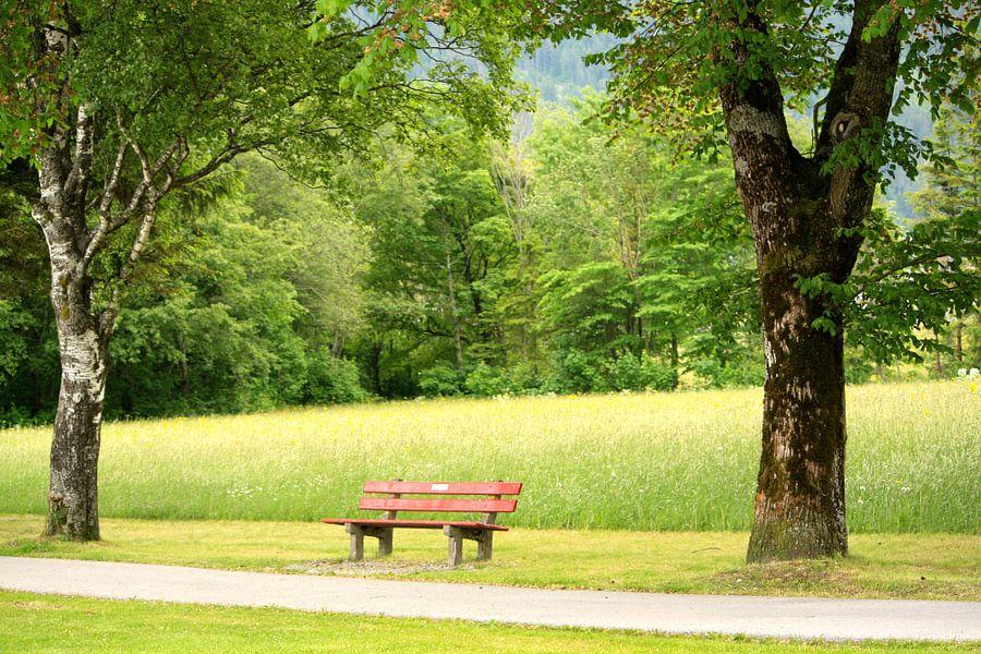 Bankje in het park van Menno Heijboer
