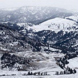 Overlook of Yellowstone van Sjaak den Breeje