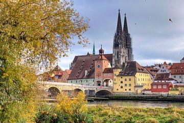 Panoramisch uitzicht op Regensburg in de herfst van Roith Fotografie