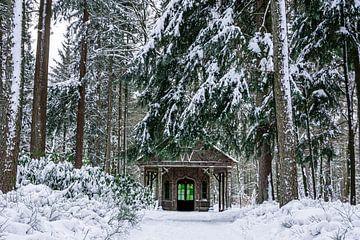 Sneeuw paleispark het loo van Patrick Oosterman