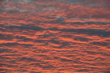 Abstract gekleurde luchten tijdens zonsopkomst van Tonko Oosterink