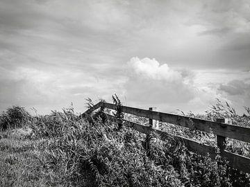 Natuur landschap (zwartwit) van Michel Aalders