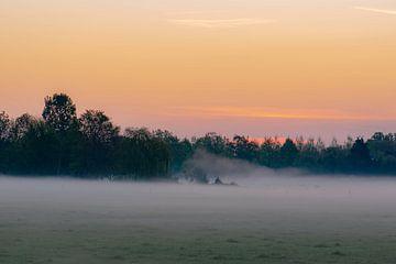Neblige Landschaft von Tania Perneel