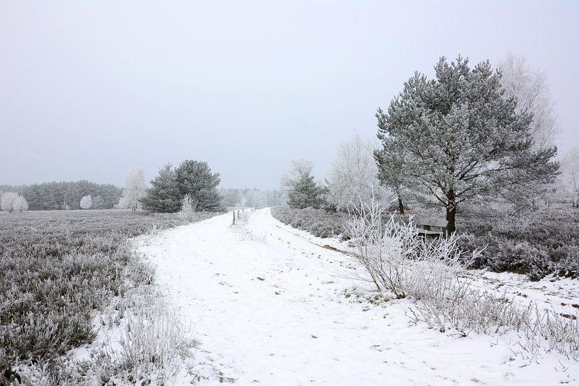 Moorland in Winter II van Gisela Scheffbuch