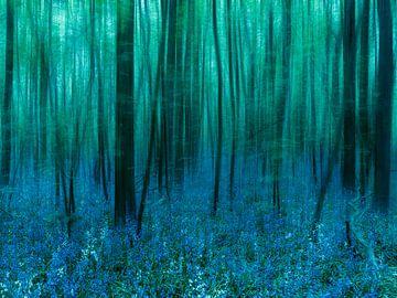Bluebells. van WTCHCRFT Images