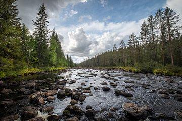 Steiniger Fluss von Marco Lodder