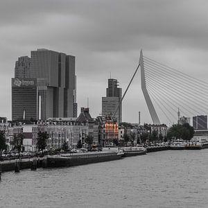 Rotterdam Erasmusbrug (67154)