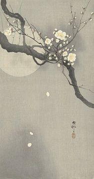 Pflaumenblüte und Vollmond des Ohara Koson