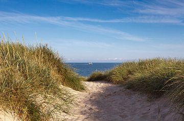 Der Weg zum Strand sur