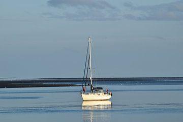 Boot auf Wattenmeer von José Batterink
