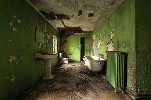 Verlassenes Badezimmer im Grün.