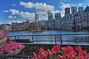 Den Haag - zicht op het Binnenhof van Jan van Tol