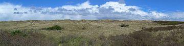 Panorama van de duinen van Ameland van