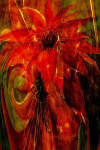 Phönix - Kaktusblüte abstrakt
