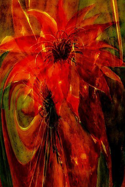 Phönix - Kaktusblüte abstrakt von Christine Nöhmeier