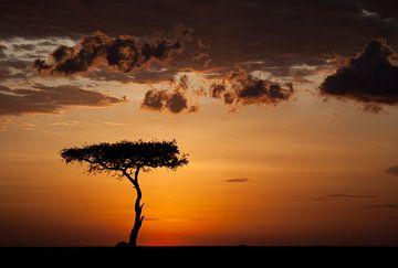 Zonsondergang bij de Masai Mara van Angelika Stern