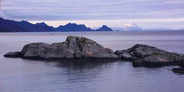 Mystisches Licht über der Küste der Lofoten von Gisela Scheffbuch