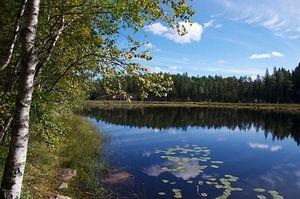 """""""Rust"""" in Nuuksio Nationaal Park, Zweden"""